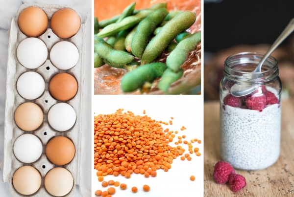 Top-5-Veggie-Protein-All-Day-Fit