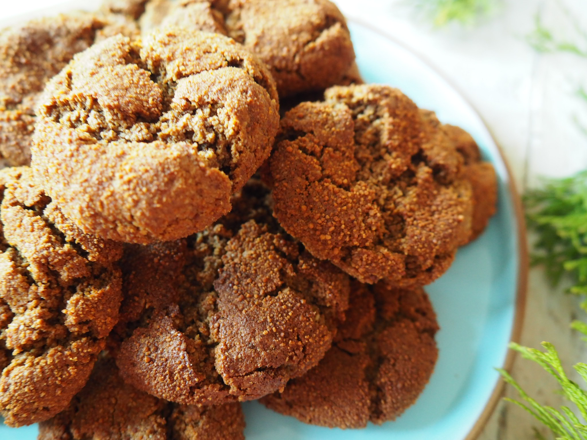 Ginger-Molasses-Cookies-All-Day-Fit